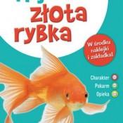 Złota rybka może wyblaknąć z powodu samotności lub zbyt zimnej wody,