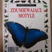 Zdumiewający świat motyli